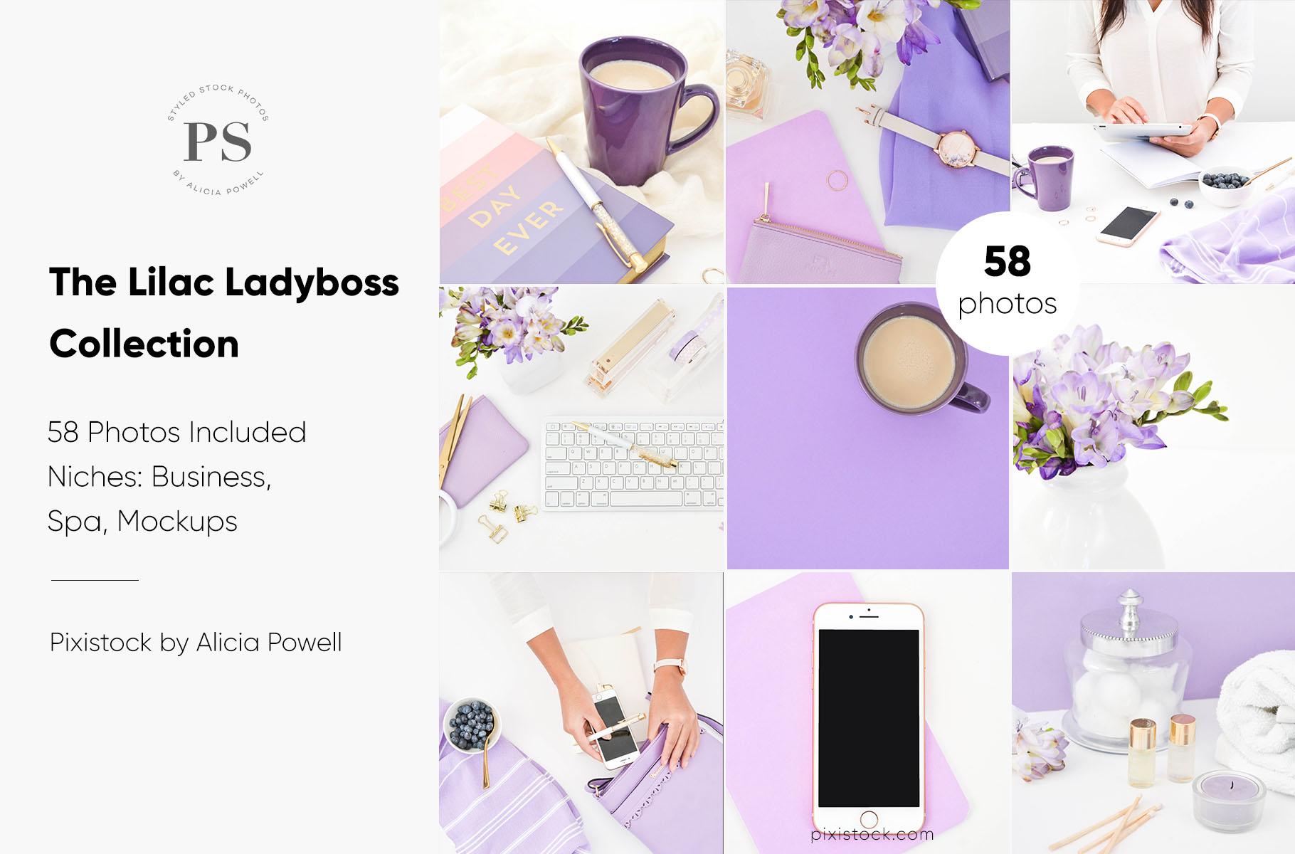 Lilac Ladyboss Stock Photo Collection